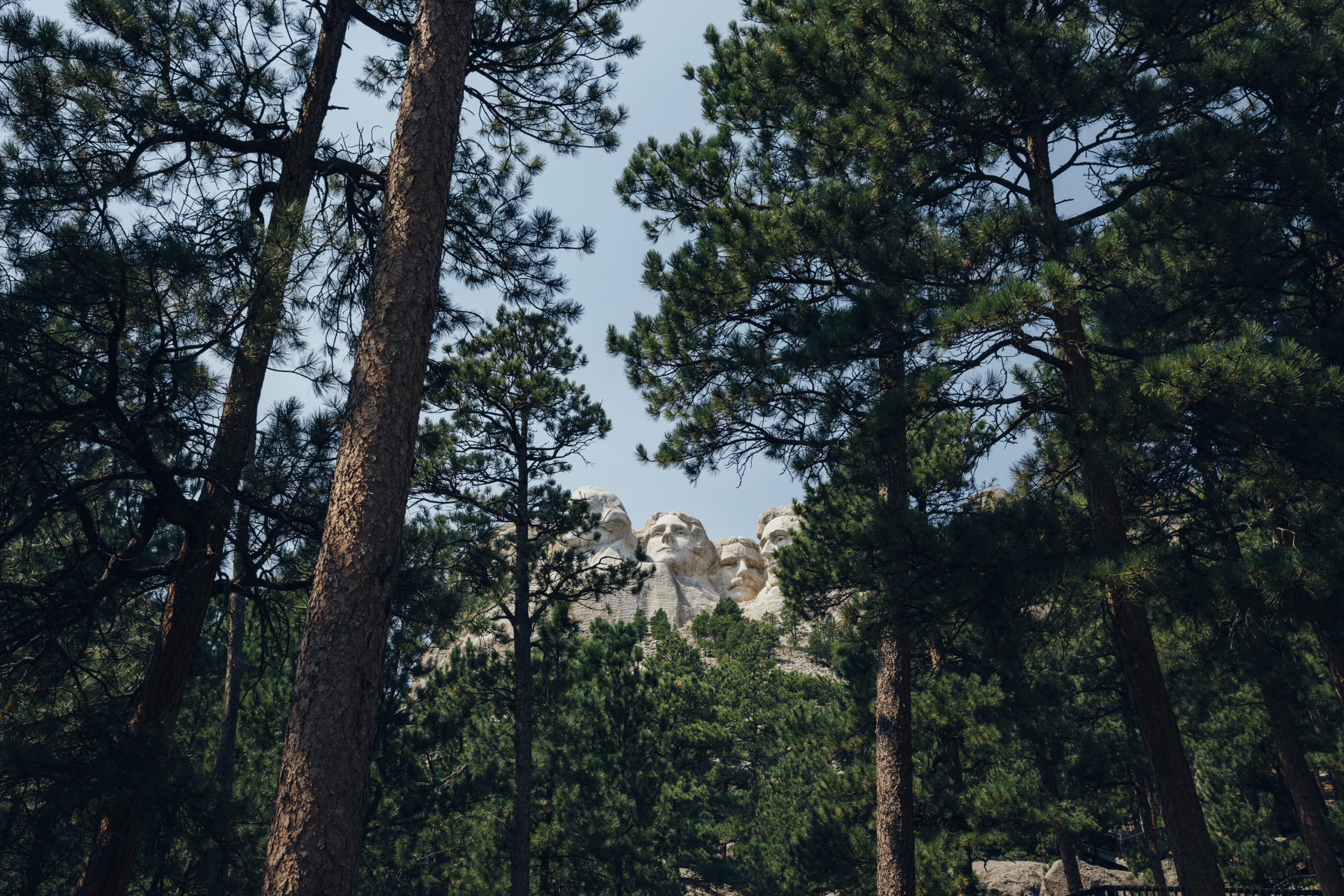 Mount Rushmore National Monument in South Dakota as seen through a stand of pine trees